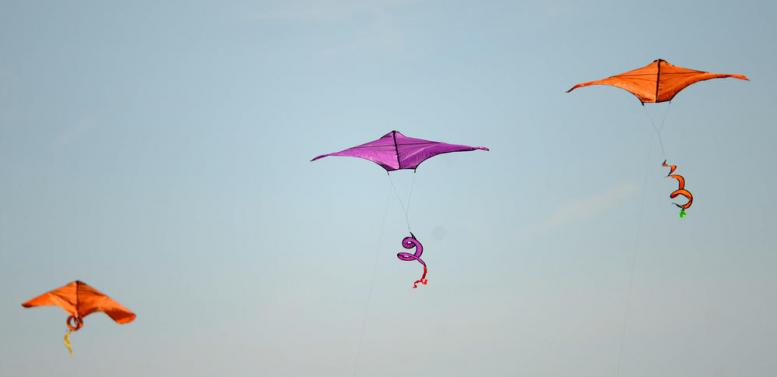 Bel Air Kite Festival